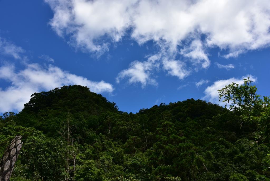 三貂嶺瀑布群步道 51.jpg