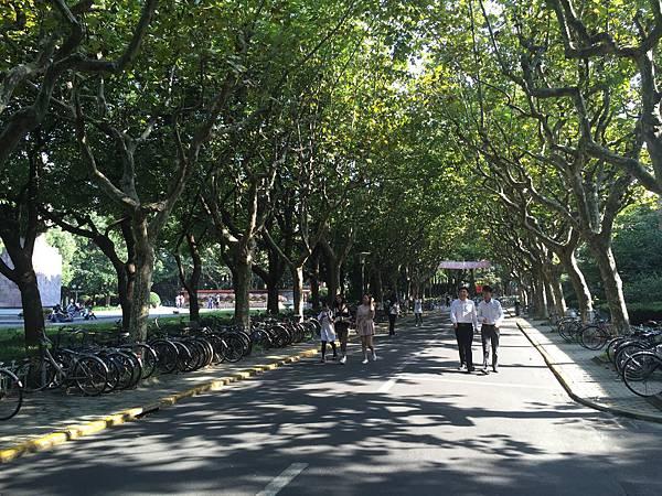 復旦大學-校園小徑.JPG