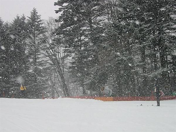 大雪紛飛 好有詩意