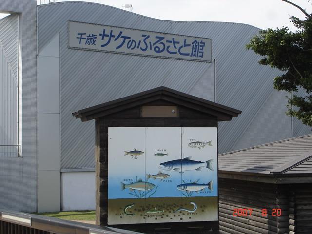 鮭魚的故鄉