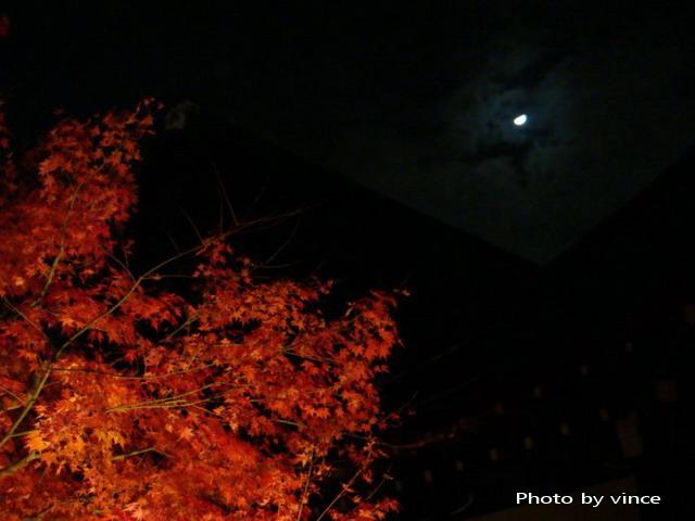 知恩院 方丈庭園 夜楓
