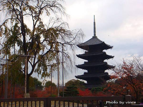 東寺的五重塔