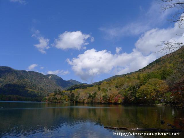 湯之湖 遠山紅葉
