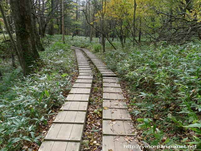 奧日光森林步道