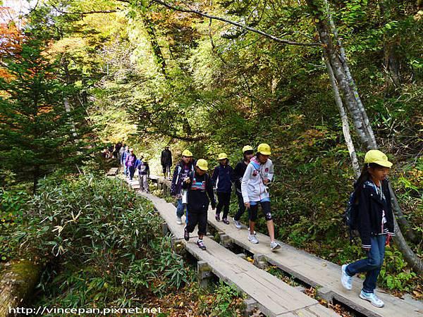 奧日光森林 小學生遠足