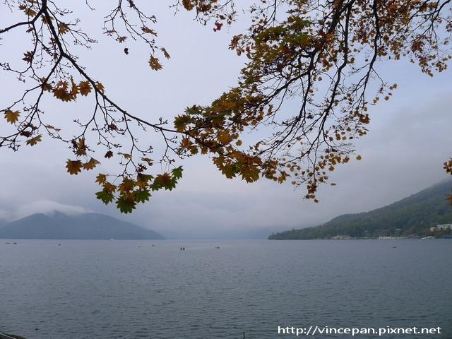 中禪寺湖 楓葉