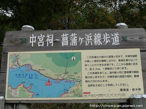 中禪寺湖自然研究路 指標