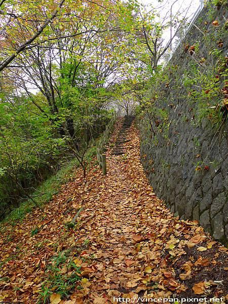 中禪寺湖北岸步道 階梯