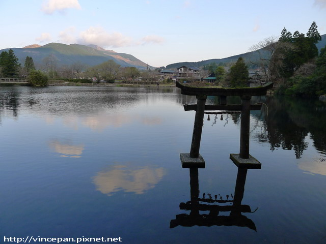 金鱗湖  鳥居 清晨