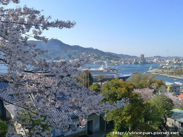 自由亭眺望 長崎港 櫻花