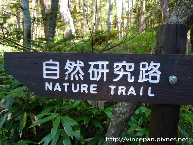 自然研究路