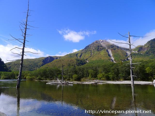 燒岳  水池 枯木2
