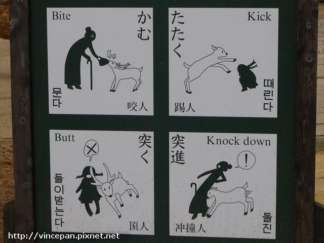 奈良 鹿 警告