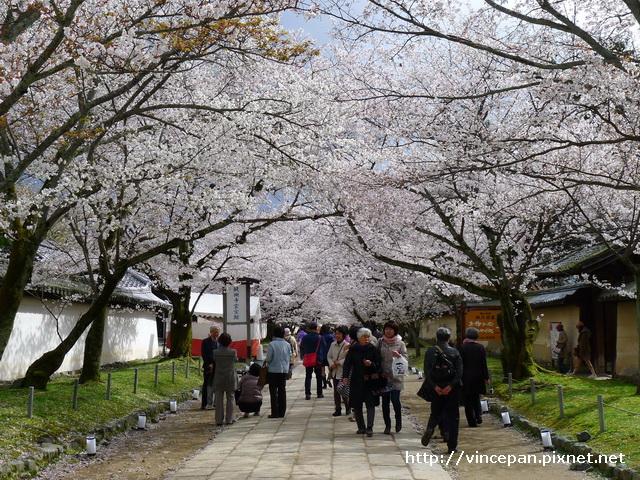 醍醐寺 靈寶館前2