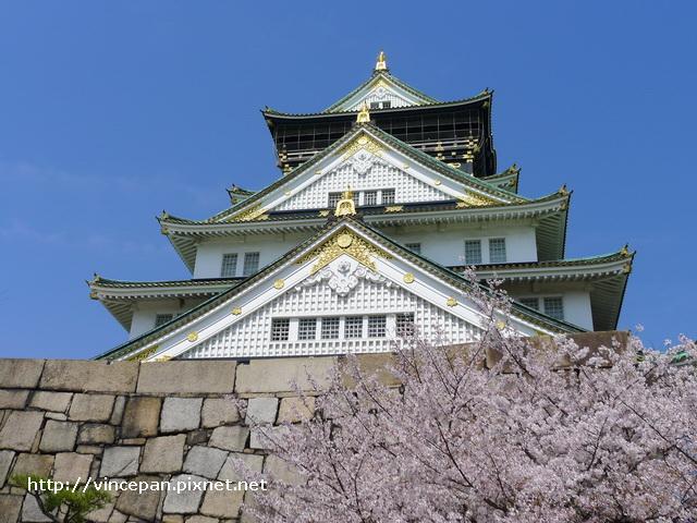 天守閣 櫻花