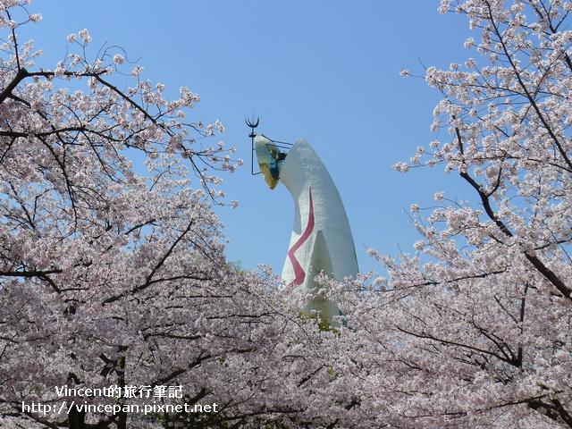 櫻花  太陽之塔