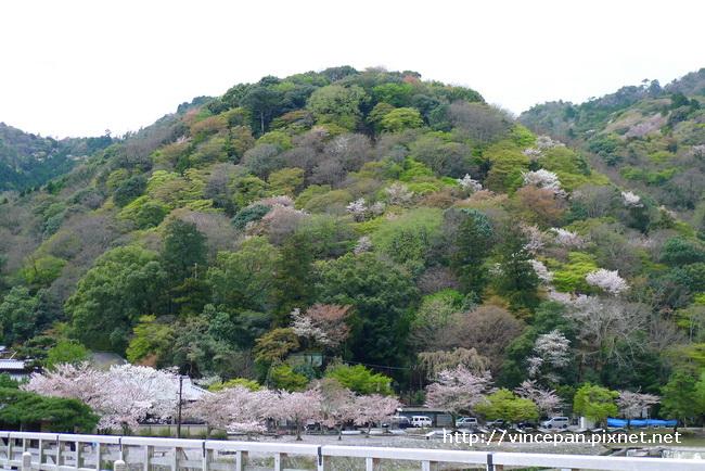 嵐山 山景1