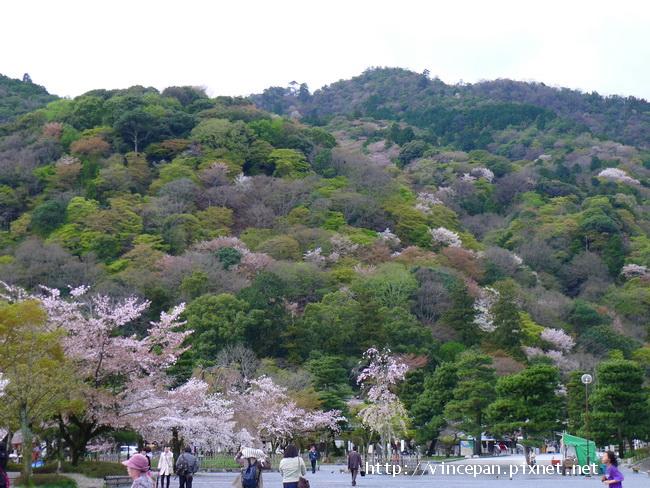 嵐山 山景2