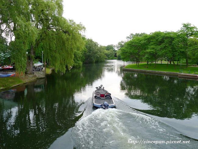 楊柳樹 遊艇