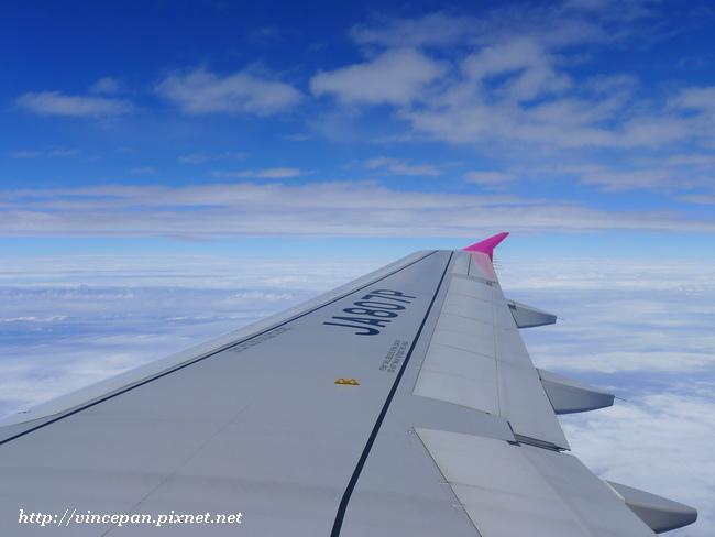 樂桃飛機 機翼