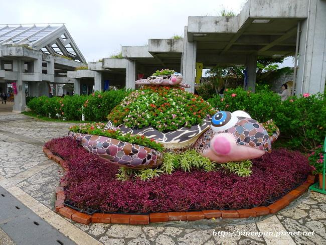 園藝造景 海龜