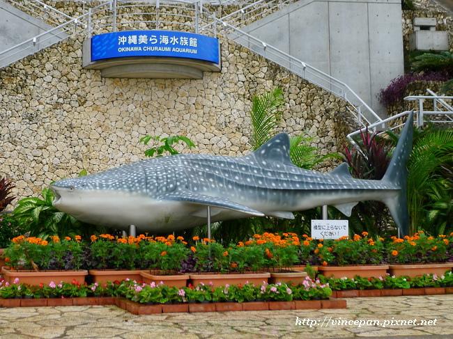 豆腐鯊的雕像