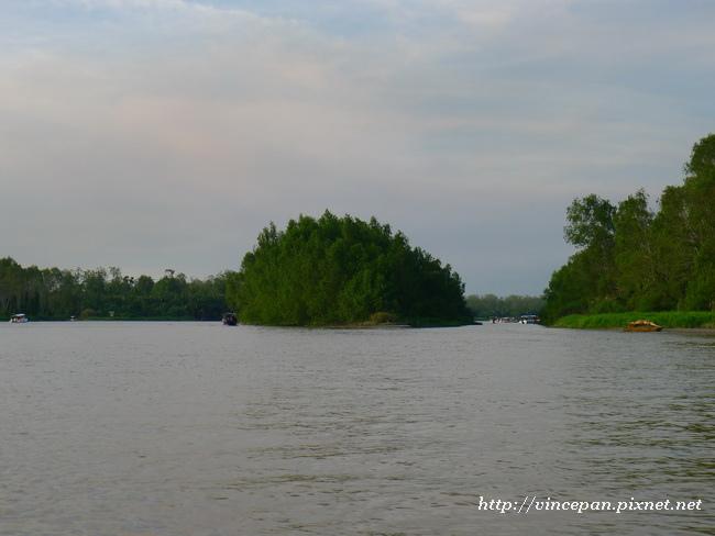 紅樹林河道2