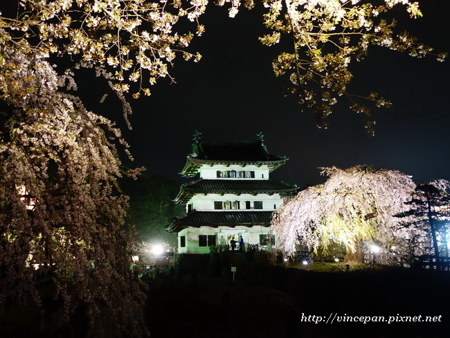 弘前夜櫻2
