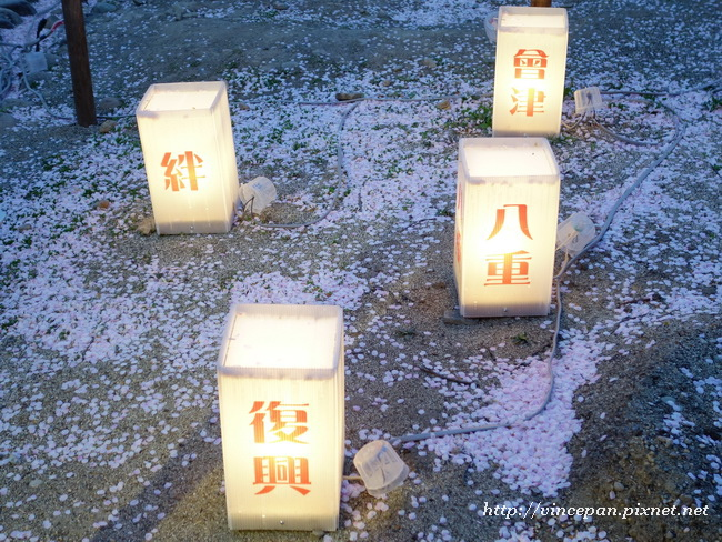 櫻花  燈籠