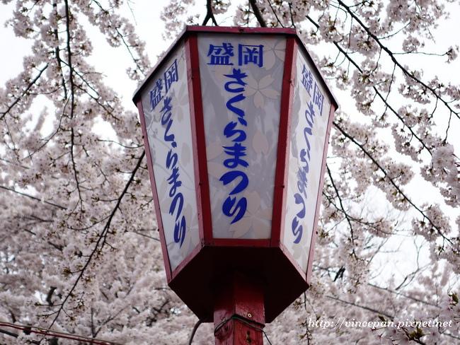 盛岡櫻花祭燈