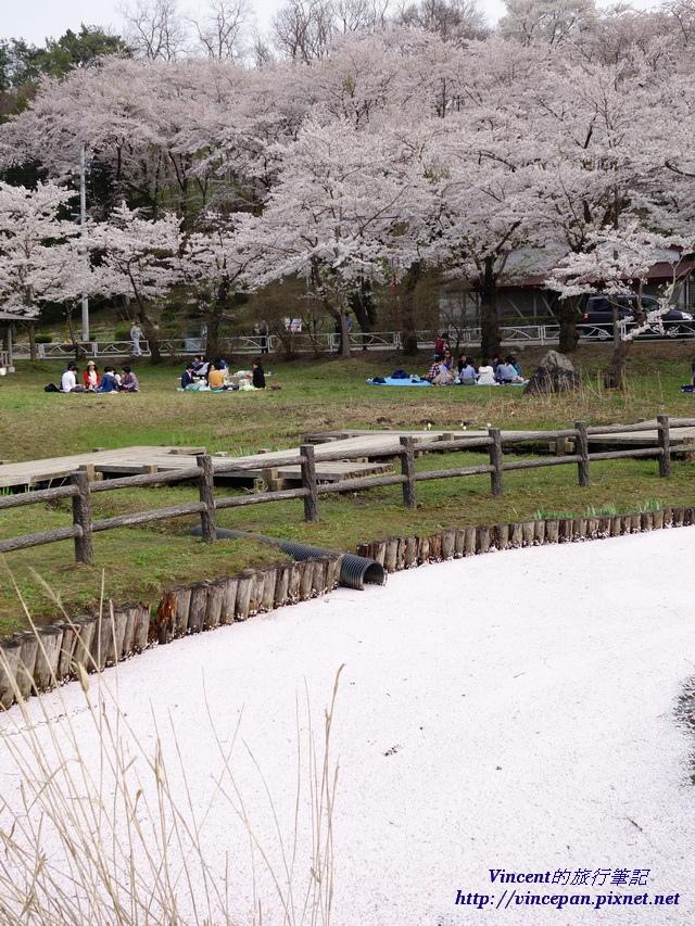 高松之池 花毯