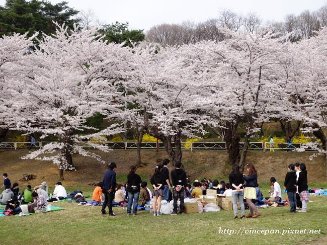 高松之池 野餐