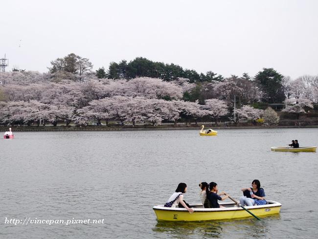 高松之池 小船3