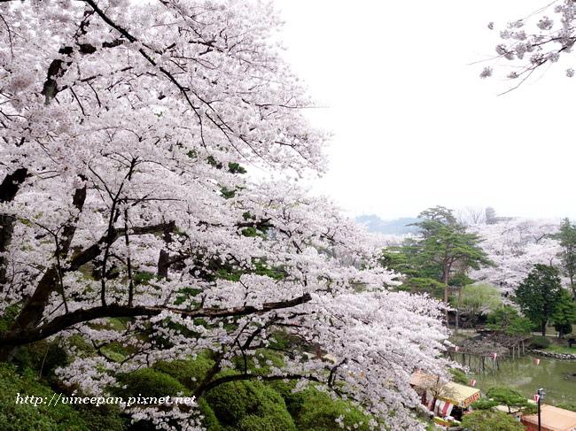 俯看千秋公園2