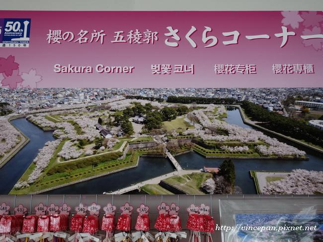 櫻花宣傳海報