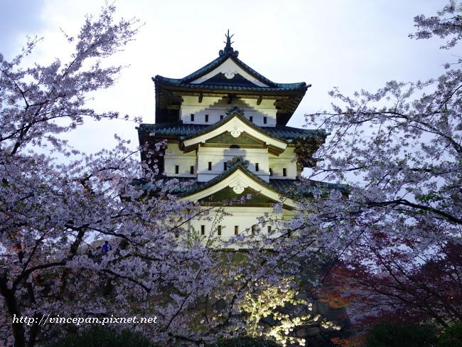 弘前城夜櫻1