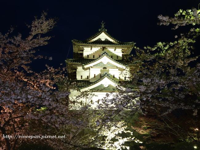 弘前城夜櫻4