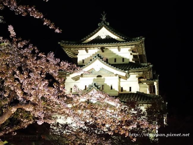 弘前城夜櫻5