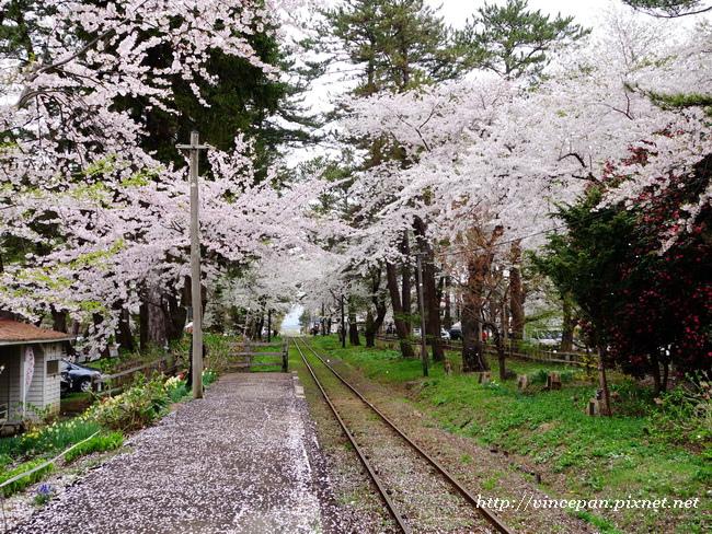 櫻花 鐵道2