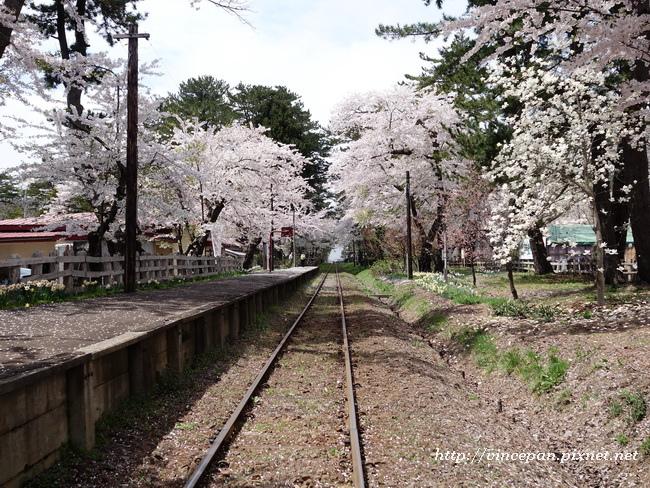 櫻花 鐵道3
