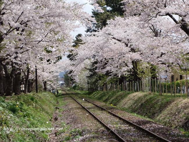 櫻花 鐵道5