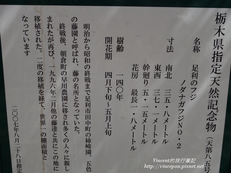 栃木縣指定天然紀念物