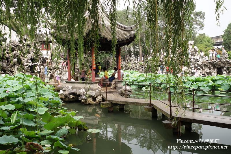 湖心亭 楊柳