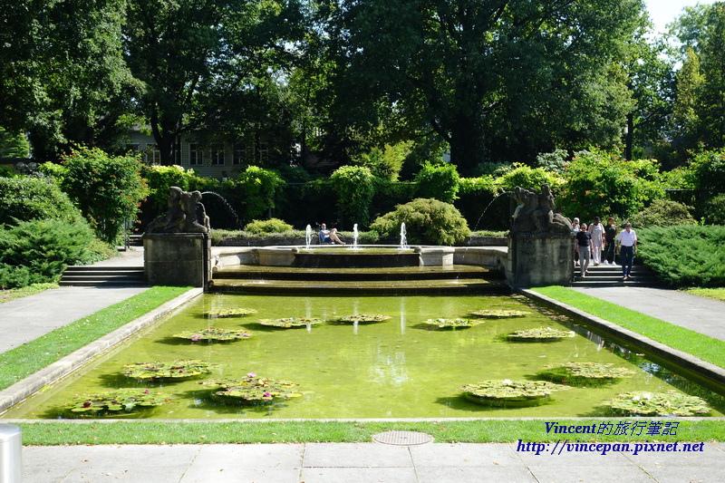 玫瑰花園 噴泉