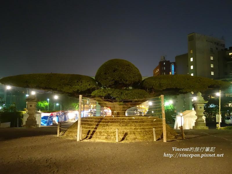 照國神社 樹雕