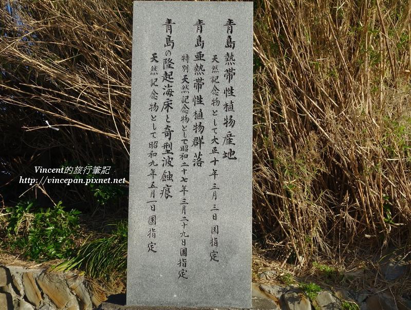 青島的特色