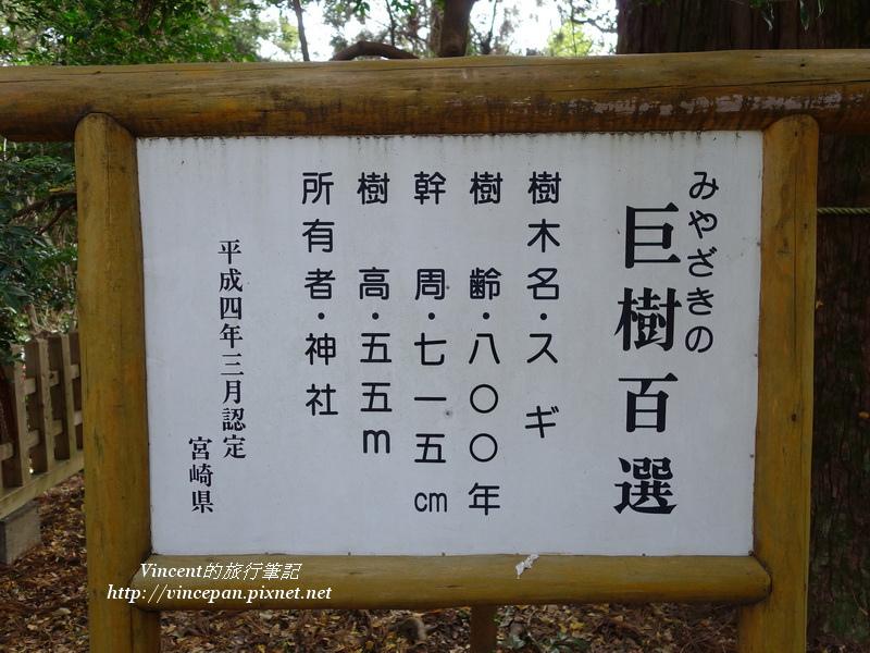 宮崎巨樹百選
