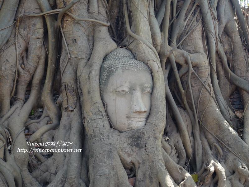 瑪哈泰寺 佛頭
