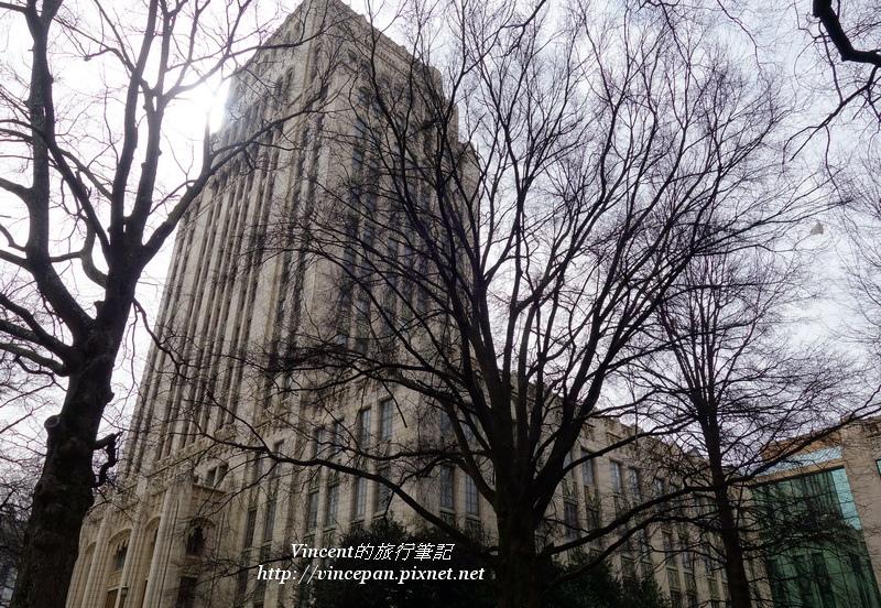 Atlanta City Hall tree