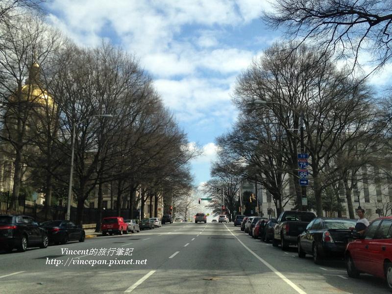 Downtown路樹